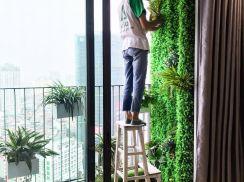 Vườn tường chị Linh Vincom Trần Duy Hưng