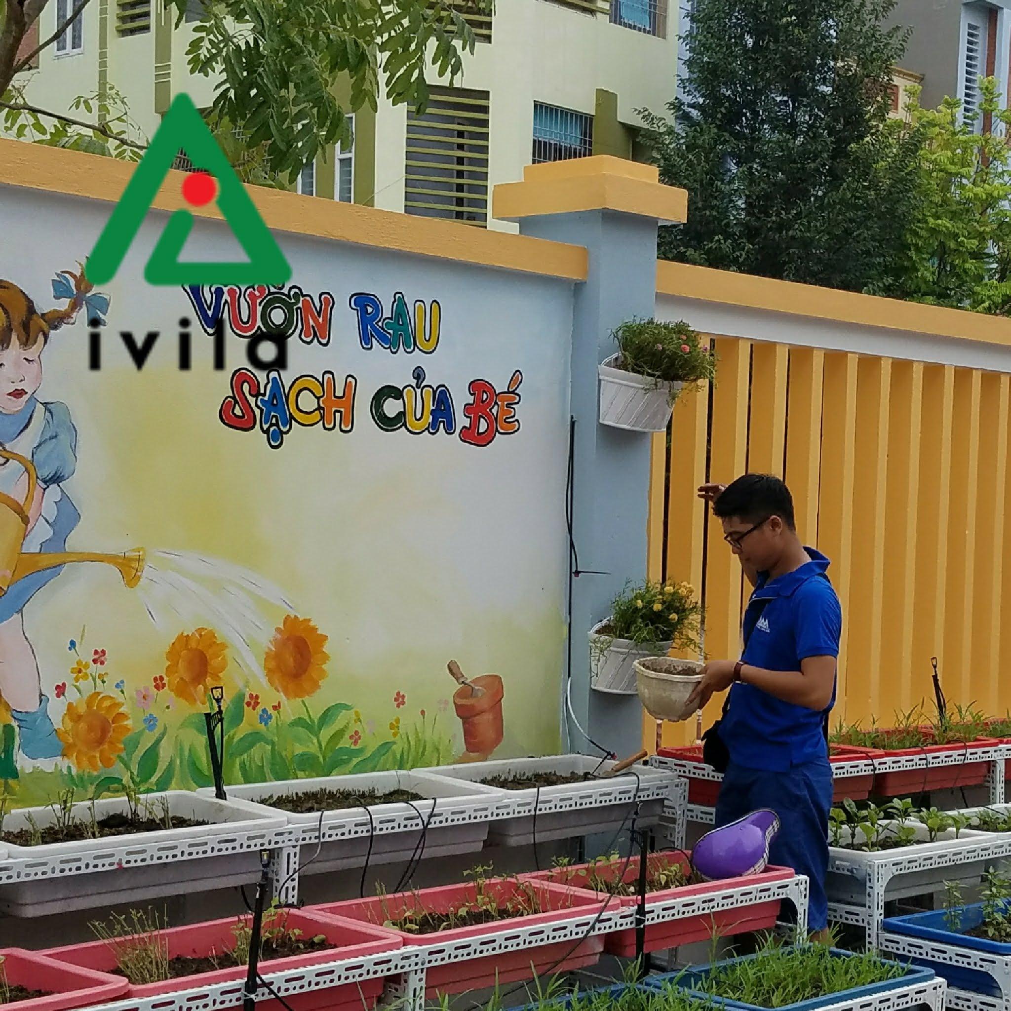 Vườn rau sạch trường mầm non Bình Minh