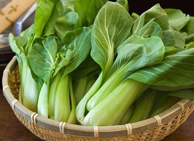Hướng dẫn cách trồng cải chíp tại nhà đạt hiệu quả cao