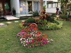 Sân vườn Vườn Mai 37